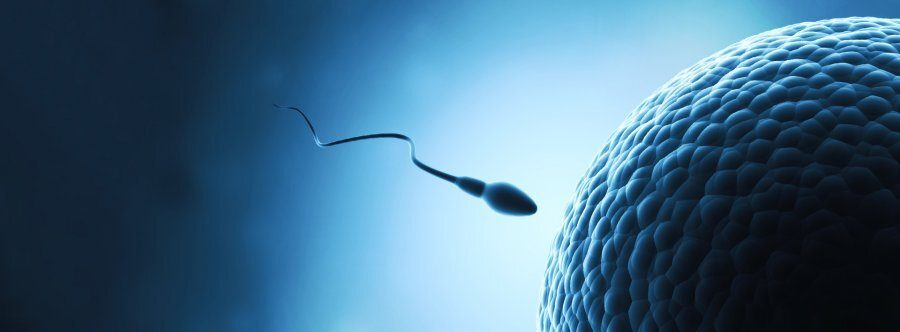 All about Azoospermia & treatment options | Dunya IVF