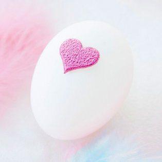 Yumurta Donasyonu ve Yumurta Bağışı Kıbrıs