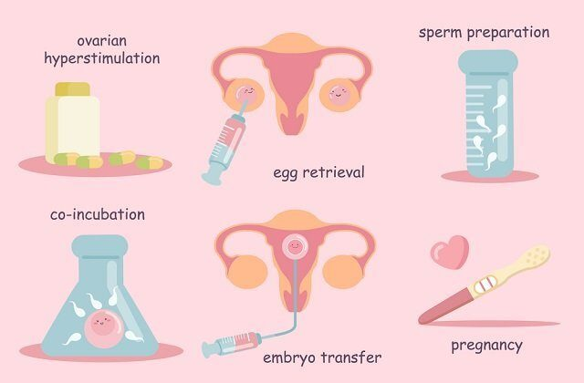 Your Fertility journey | DunyaIVF