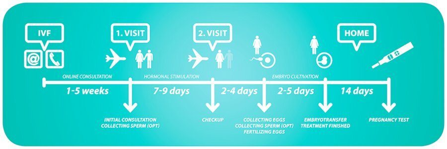 Tüp Bebek implantasyon Zaman Çizelgesi